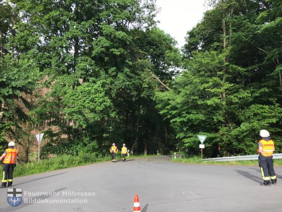 TH 1 - Baum auf Straße   20.06.21