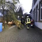 TH - Sturmtief Friederike | 18.01.18