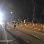 TH 1 - Bäume auf Straße   16.02.20