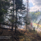 Brand 2 - Waldbrand | 05.08.18