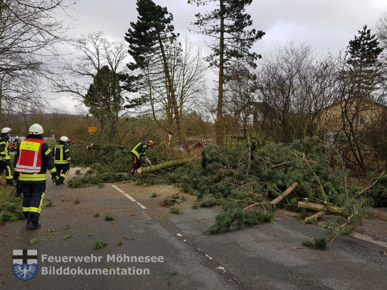 TH - Sturmtief Friederike | 18.01.18